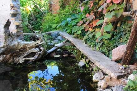 Holzstege führen über  und neben Teiche: tropischer Garten von Gartenarchitekturbüro Timm