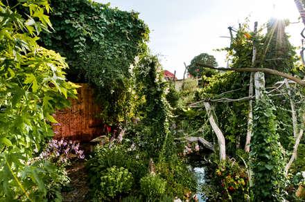 Der plantasie - Garten: tropischer Garten von Gartenarchitekturbüro Timm