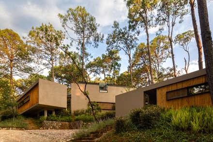 Fachadas de acceso - Casas 1 y 2: Casas de estilo escandinavo por Weber Arquitectos