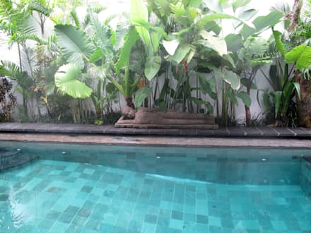 piedra para piscina : Piscinas de estilo tropical de Ale debali study