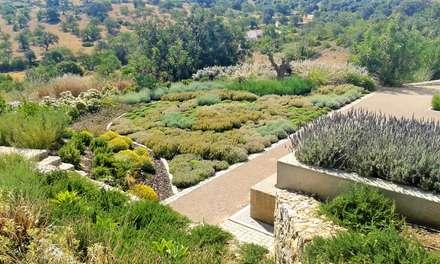 Jardim Malhão: Jardins mediterrânicos por JARDIMGARVE