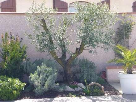 mediterranean Garden by LES PAYSAGES URBAINS