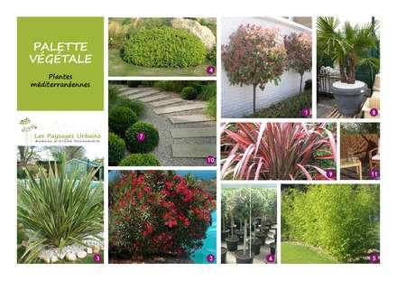 Liste des végétaux: Jardin de style de style Moderne par LES PAYSAGES URBAINS