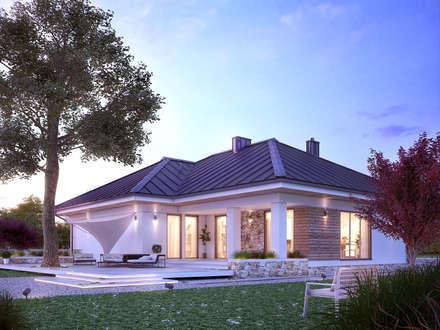 Wizualizacja projektu domu Ambrozja 8: styl nowoczesne, w kategorii Domy zaprojektowany przez Biuro Projektów MTM Styl - domywstylu.pl