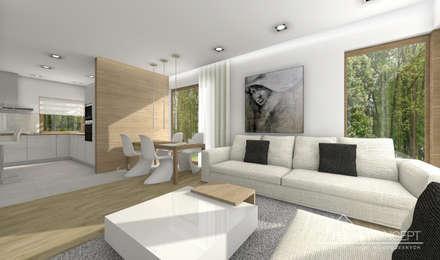 Projekt domu HomeKONCEPT-23- projekty domów z wnętrzami: styl , w kategorii Salon zaprojektowany przez HomeKONCEPT | Projekty Domów Nowoczesnych