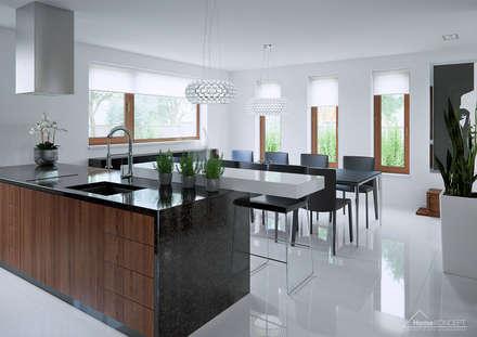 Projekt domu HomeKONCEPT-13- wnętrze: styl , w kategorii Kuchnia zaprojektowany przez HomeKONCEPT | Projekty Domów Nowoczesnych