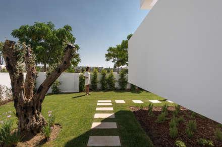 Cinco Terraços e um Jardim: Jardins modernos por Corpo Atelier