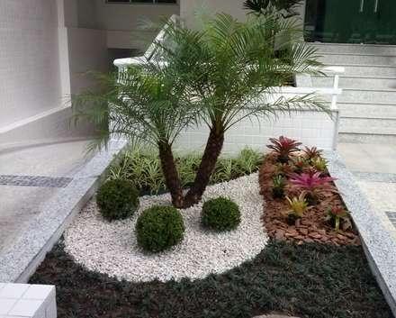 Tropical Contemporâneo: Jardins tropicais por Mateus Motta Paisagismo