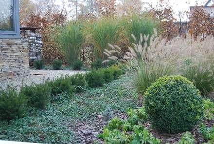 Ogród w Mikołowie, śląskie: styl , w kategorii Ogród zaprojektowany przez MUGO OGRODY