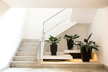 Jardim de Inverno Moderno: Corredores, halls e escadas modernos por Cecília Mesquita Arquitetura