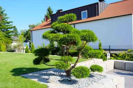 modern Garden by Bodin Pflanzliche Raumgestaltung GmbH