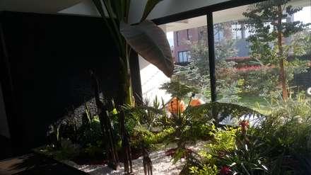 Jardin interior salon principal: Jardines de estilo moderno por Camilo Pulido Arquitectos