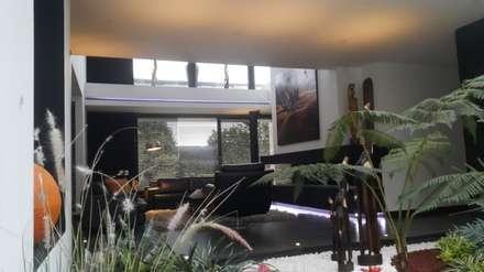 Jardin interior casa: Jardines de estilo moderno por Camilo Pulido Arquitectos