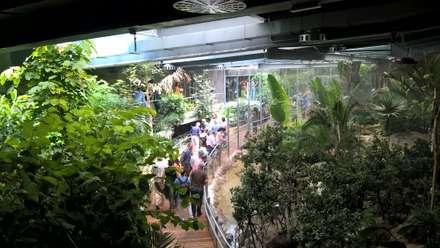 Paisajismo Finalizado.: Museos de estilo  de GreenerLand. Arquitectura Paisajista y Tematización