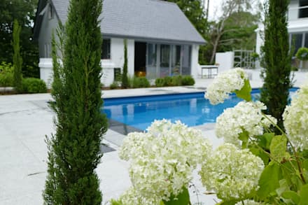 Poole, England. Outdoor project. : modern Pool by Compass Pools