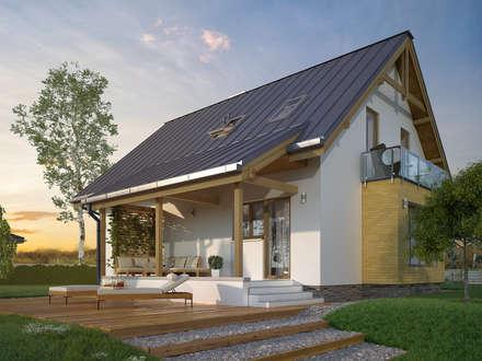 Wizualizacja projektu domu Aloes: styl nowoczesne, w kategorii Domy zaprojektowany przez Biuro Projektów MTM Styl - domywstylu.pl