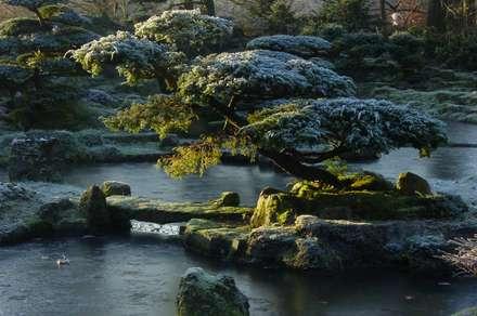 Lugares para eventos de estilo  por japan-garten-kultur