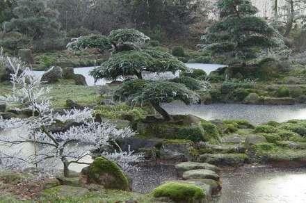 صالة مناسبات تنفيذ japan-garten-kultur