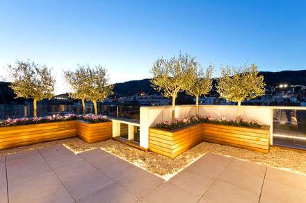 بلكونة أو شرفة تنفيذ Garden Center Conillas S.L