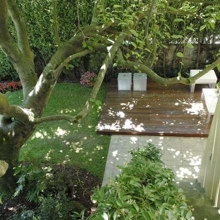 Jardim-Porto: Jardins modernos por TERRA JARDIM