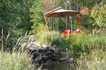 Elephant - загородный дом для активного отдыха: Сады в . Автор – Irina Derbeneva