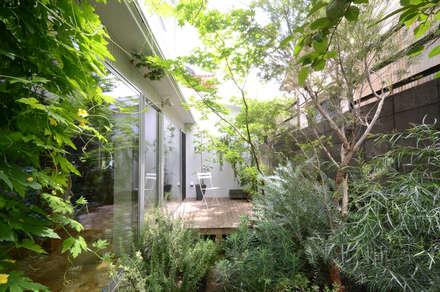武蔵境の家: ディンプル建築設計事務所が手掛けた庭です。