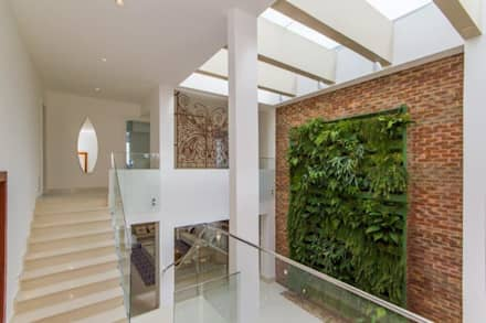 mediterranean Conservatory by Tammaro Arquitetura e Engenharia
