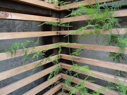 Quincho Domo + Paisajismo: Jardines de estilo rústico por DOMOTERRA LIMITADA
