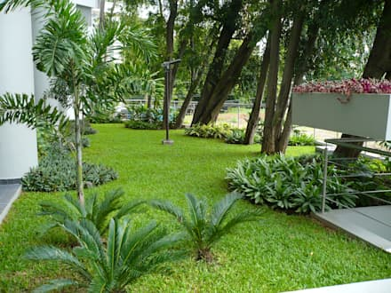 LUXOR TOWERS - PANAMA CITY: tropical Garden by TARTE LANDSCAPES