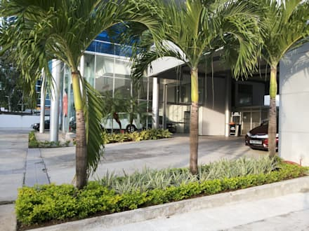 BAHIA MOTORS AT COSTA DEL ESTE - PANAMA CITY: tropical Garden by TARTE LANDSCAPES
