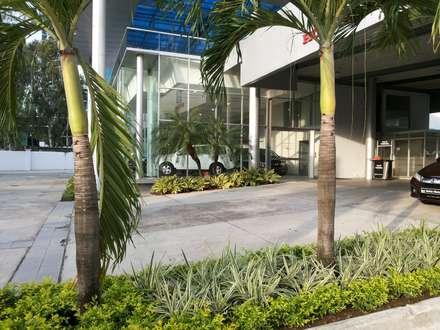 BAHIA MOTORS AT COSTA DEL ESTE - PANAMA CITY: tropical Garden by TARTE LANDSCAPES