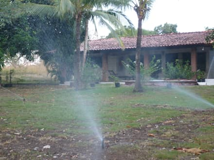 IRRIGATION SYSTEMS: tropical Garden by TARTE LANDSCAPES