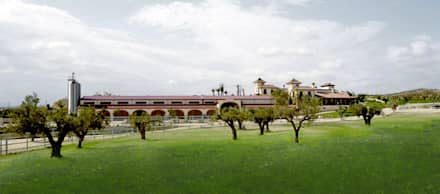 Fachada desde el Jardín de eventos: Jardines de estilo colonial de Vidal Molina Arquitectos