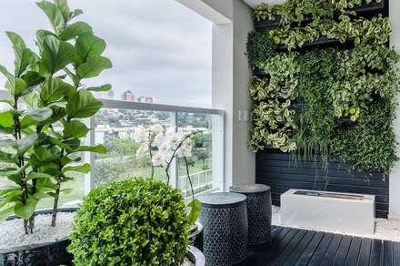 Apartamento Icon: Jardins modernos por Felipe Mascarenhas Paisagismo