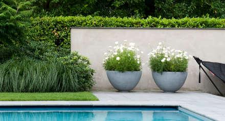 Luxe tuin met zwembad: modern Zwembad door Jaap Sterk Hoveniers