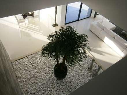 Moradia MPC: Jardins de Inverno modernos por Arquihom, Lda