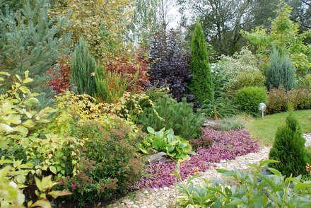Лобня: Сады в . Автор – ПАН Ландшафт