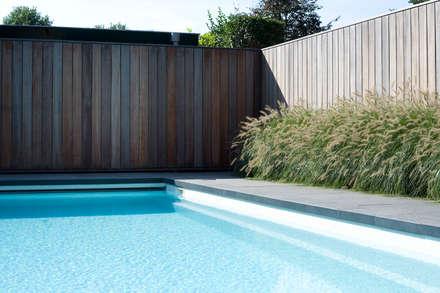 Zwembad met sfeer.: modern Zwembad door Heart for Gardens.