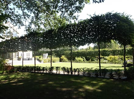 A HaleBarns Garden: asian Garden by Charlesworth Design