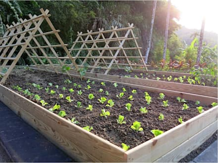 天然木材做圍籬!:  庭院 by 霖森園藝