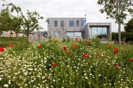 Springfield Farm Exterior: modern Houses by Designscape Architects Ltd