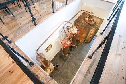 قبو النبيذ تنفيذ vera nunes arquitecta