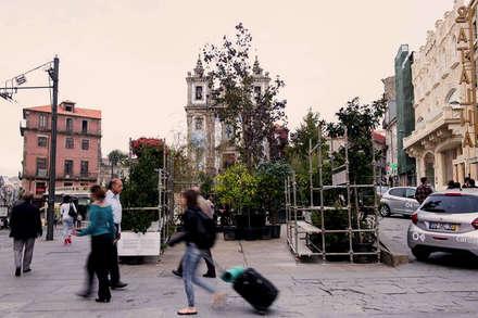 Praça pós-intervenção: Jardins ecléticos por STILL urban design