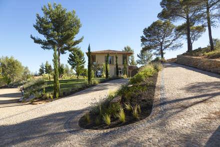 BEAURECUEIL - Jardin au pied de la Sainte Victoire: Jardin de style de style Méditerranéen par Agence MORVANT & MOINGEON