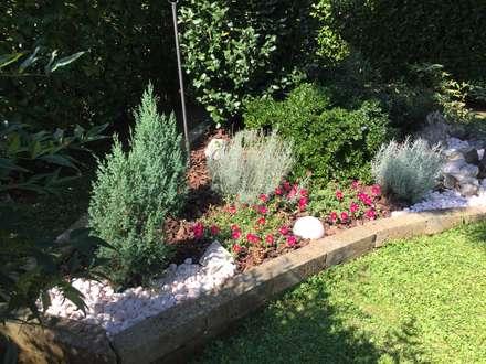 Piante e sassi: Giardino in stile in stile Eclettico di Simona Carcano