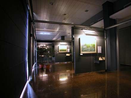 博物館 by ibedi laboratorio di architettura