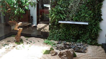 Jardim interior em Castelo de Paiva: Jardins modernos por APROplan