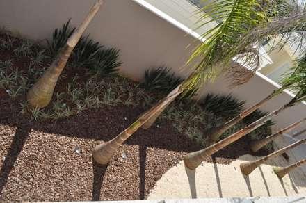 Paisagismo residencial na Granja Viana: Jardins modernos por Kelly Abramo Paisagismo