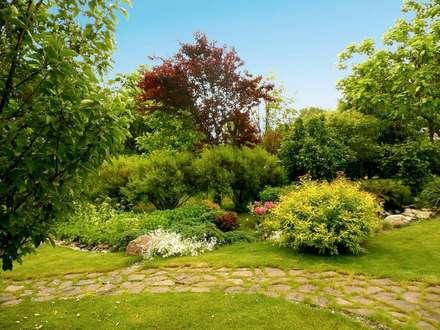 Эстетика непринужденности: Сады в . Автор – Укр Ландшафт Парк