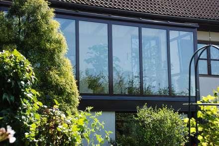 Moderne Wintergarten Ideen & Inspiration | Homify Wintergarten Einrichten Welche Pflanzen Dort Einen Platz Finden